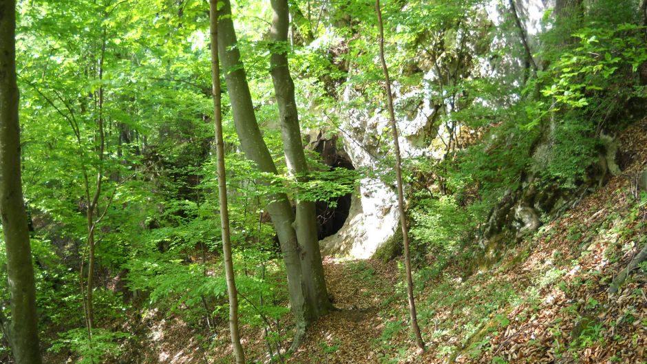 """Naturdenkmal """"Hallourhöhle"""", Hernstein"""