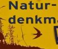 """Naturdenkmal """"2 Linden"""", Gutenstein"""
