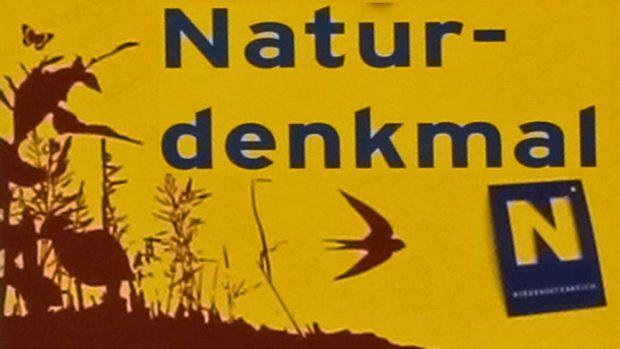 """Naturdenkmal """"2 Winterlinden samt Bildstock"""", Waidmannsfeld"""
